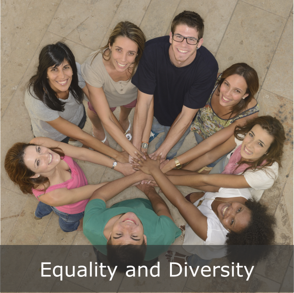 equality diversity 600